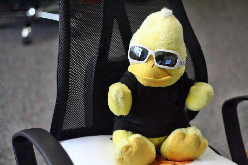 Big Bird - unser Chef in seiner besten Position